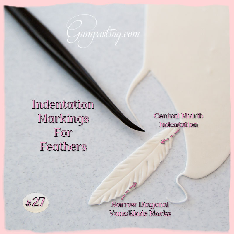 {Markings for Flamingo Feathers}