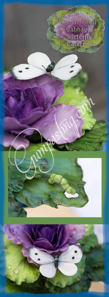 {Ornamental Cabbage Visited by a Cabbage Butterfly & a Little Green Caterpillar}